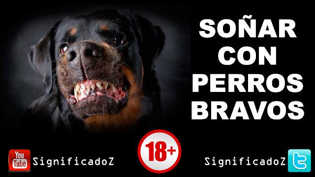 Soñar con Perros Bravos ¿Que Significa?
