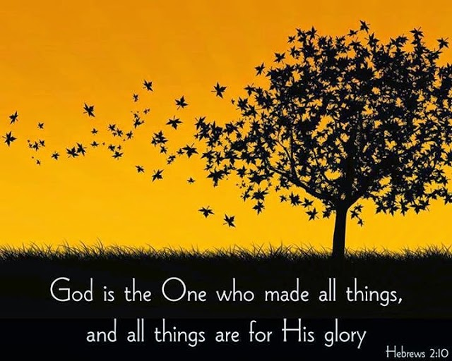God Made all things for his GLORY