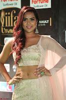 Prajna Actress in backless Cream Choli and transparent saree at IIFA Utsavam Awards 2017 0073.JPG