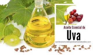El aceite esencial de uva entre sus propiedades se encuentran los ácidos grasos esenciales y vitaminas