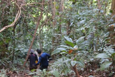 Jalan Menanjak menuju Mercusuar Tanjung Datu