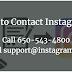 Call Instagram Help