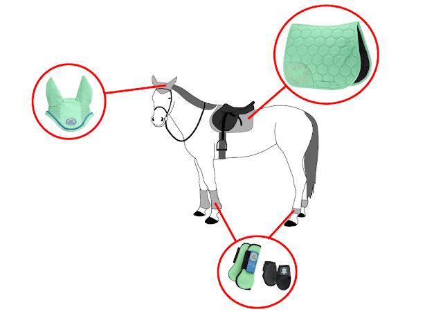 tenue de printemps - équitation - mint - citron vert