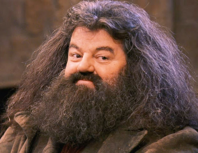harry potter hagrid