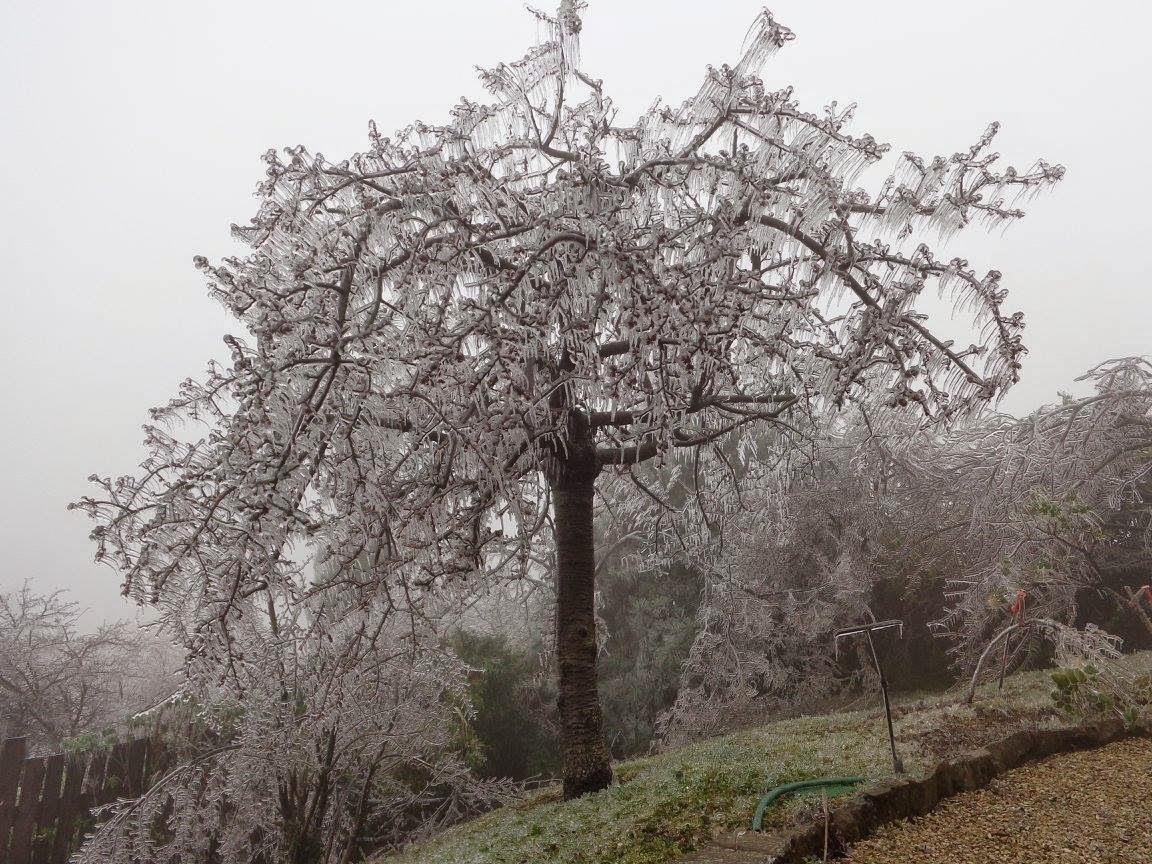 A kertépítés, kerttervezés jég miatt téli szünetet tart