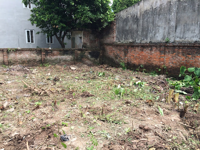 Mặt bằng thi công tòa chung cư xóm 4C Đông Ngạc (Minh Đại Lộc 1) Bắc Từ Liêm