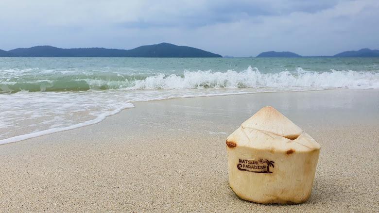 椰子與海灘