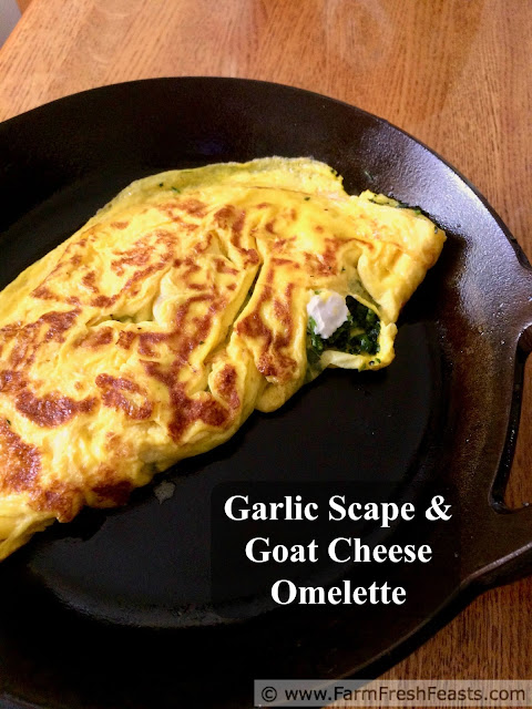 This vegetarian omelette is stuffed with garlic scapes, parsley, and creamy goat cheese for a fresh Spring flavor using what's growing right now.