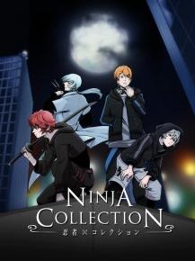 Ninja Collection 4  online