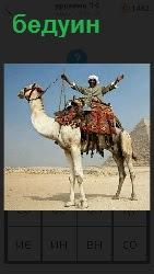 460 слов 4 бедуин на верблюде 14 уровень