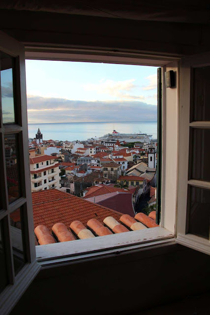 a window with a great view