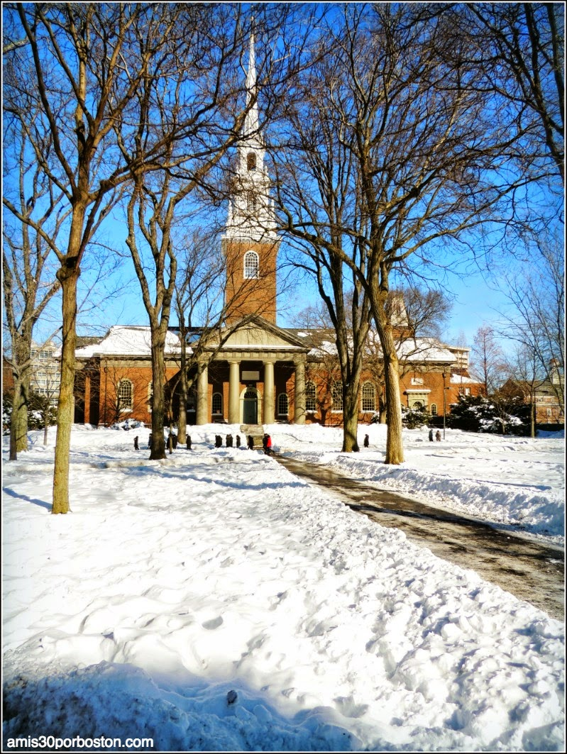 Juno: La Universidad de Harvard después de la Tormenta