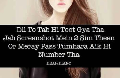 dear diary se images shayari and love quotes-4