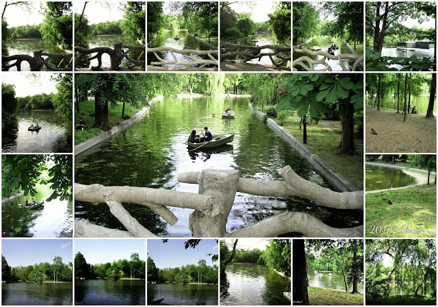 """Lake Cișmigiu is a lake in the center of Bucharest, Sector 1, in Cișmigiu Gardens. The lake has a surface of 29.500 m², a length of 1.3 km, a width of 50 meters and a depth of 1–2 meters. During winter the lake is dried artificially and a skate park is organized on the lake bed. Close to the Lake Cișmigiu in the Cișmigiu Gardens is the much smaller Lake Lebedelor, which is reserved for water birds. History The lake was formed from an old bifurcation of the Dâmbovița River and was known in the time of Matei Basarab as Balta lui Dura neguțătorul"""