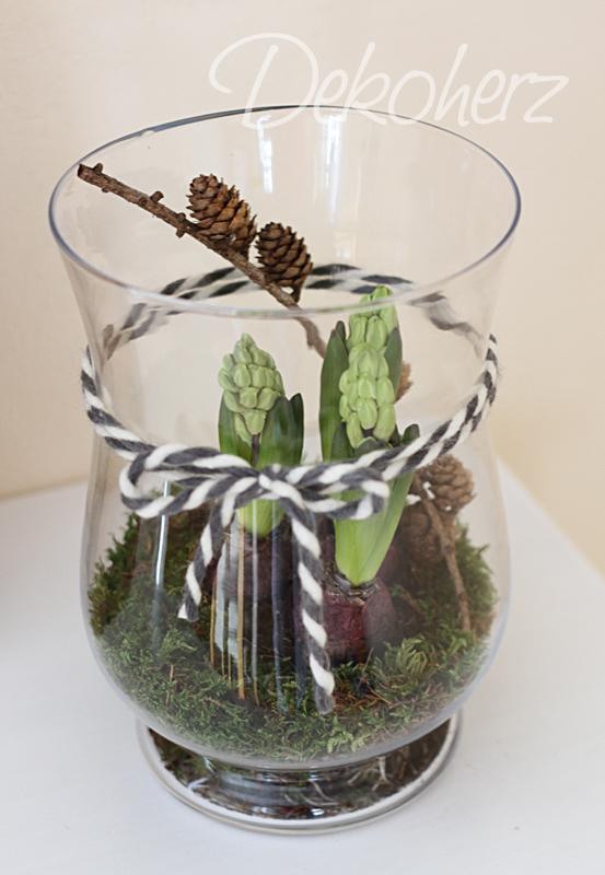 hyazinthen im glas dekorieren dekoration im fr 252 hling hyazinthen im glas traumf 228 nger. Black Bedroom Furniture Sets. Home Design Ideas