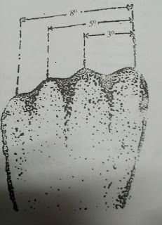 Indication of Target by Hand(fist)