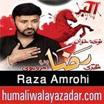 http://www.humaliwalayazadar.com/2016/09/raza-amrohi-nohay-2017.html