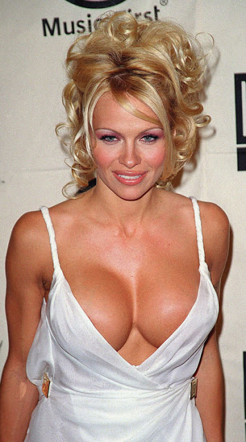 photo gallery pamela anderson hot hd photo. Black Bedroom Furniture Sets. Home Design Ideas