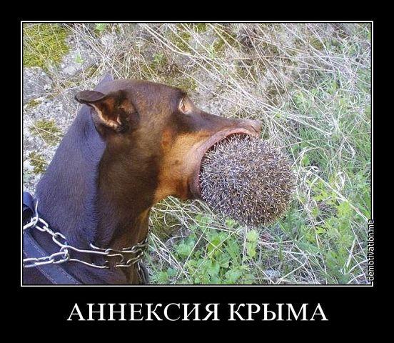 Украина выражает решительный протест из-за визита Путина в оккупированный Крым, - МИД - Цензор.НЕТ 6645