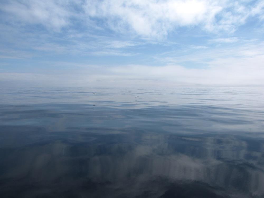 carnet de rencontres océaniques
