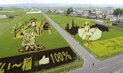 Pertanian Organik Di Jepang Luar Biasa