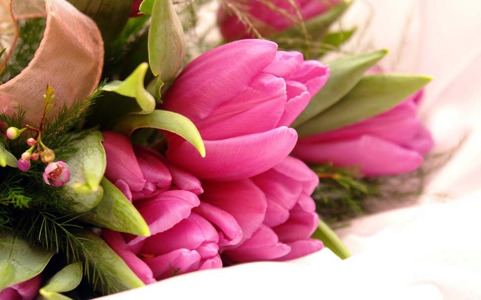fancy-pink-flowers-good-morning-hd
