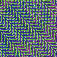 The Top 10 Albums Of The 90s: 05. Animal Collective - Merriweather Post Pavilion
