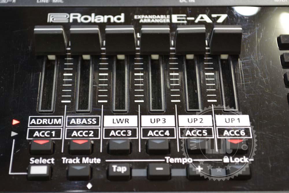 organ ea7