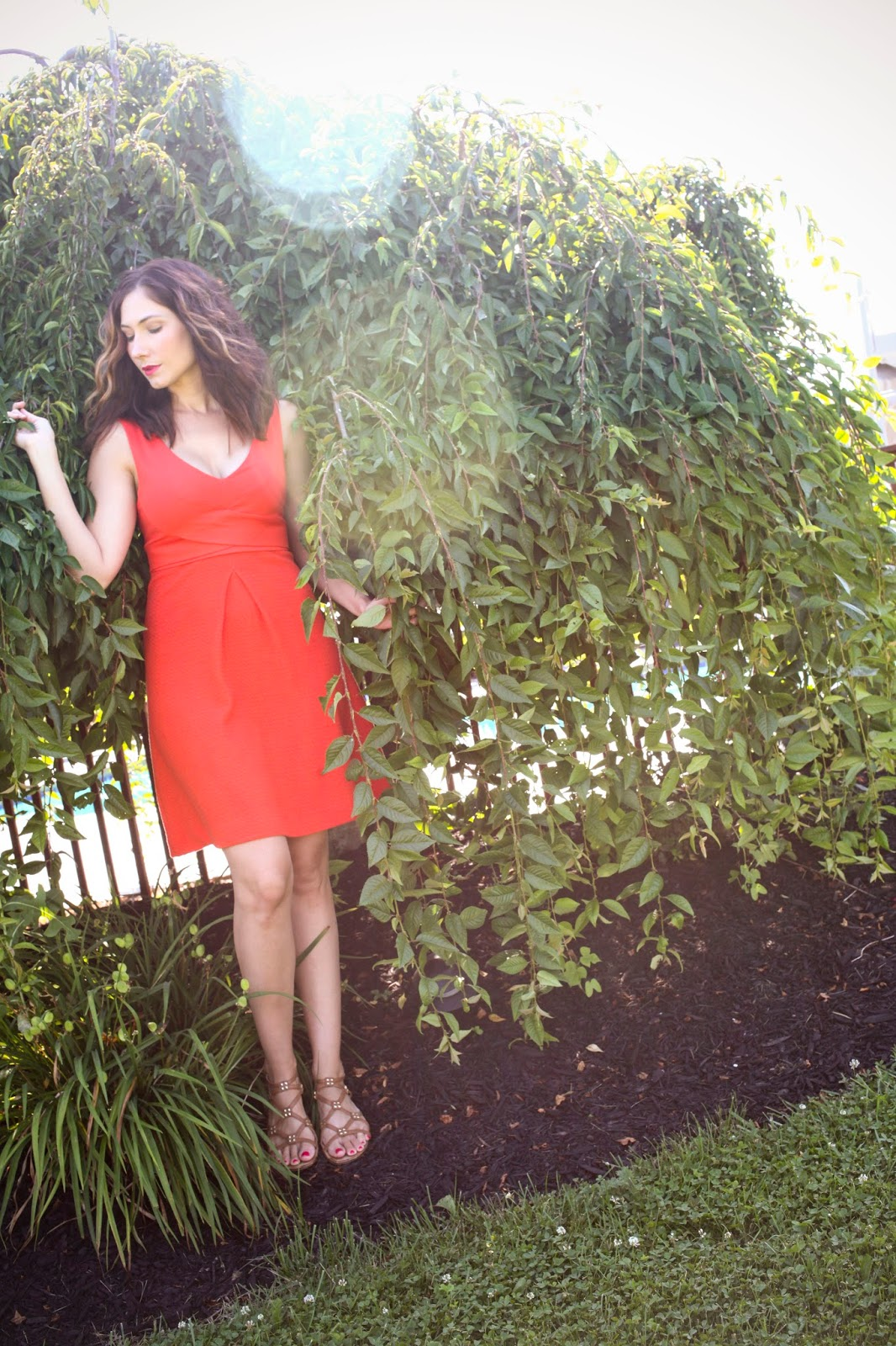 Ardmore Dress on Amy West