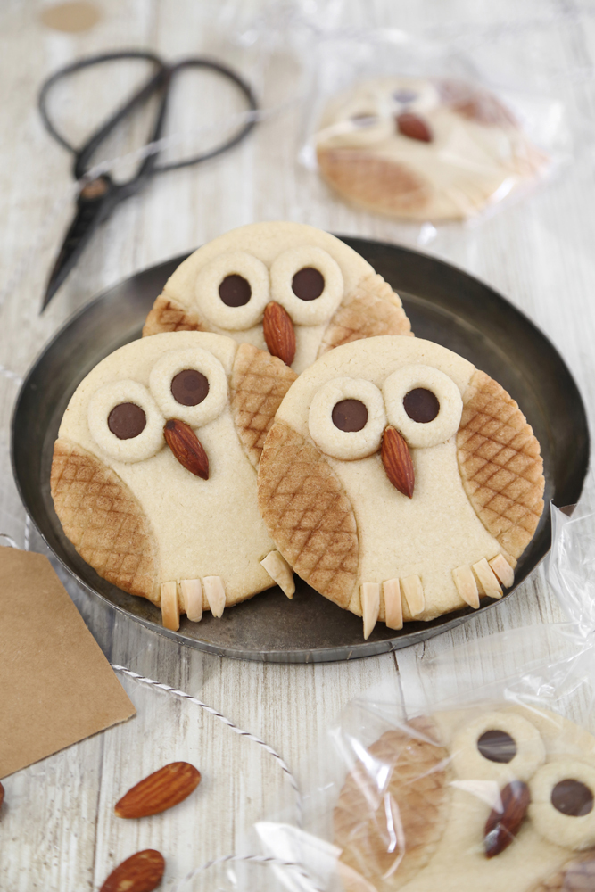 Owl Butter Cookies For The Etsy Blog Sprinkle Bakes