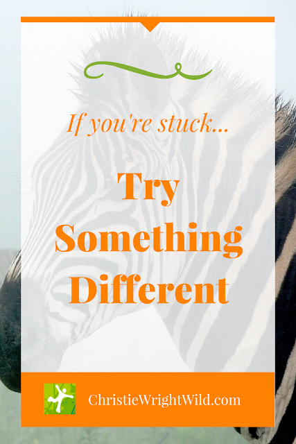 Old adage thirty days hath September || how to try something different | writing