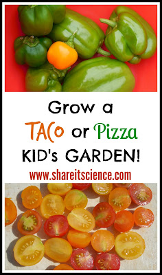 Grow a Taco or Pizza Kid's Garden and seed giveaway