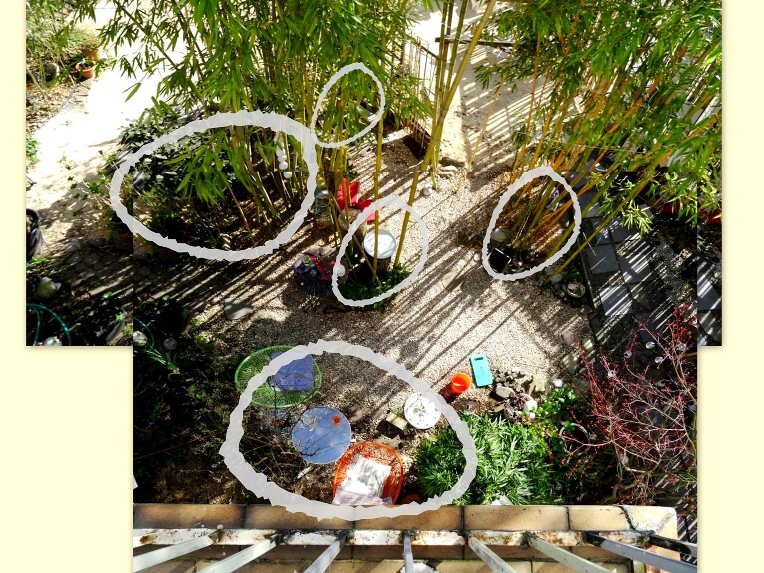 meine bambus inseln und eine ode an den garten. Black Bedroom Furniture Sets. Home Design Ideas