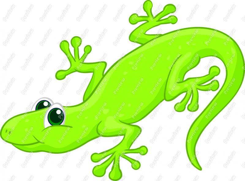 clipart newt - photo #43