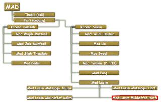 Contoh dan Hukum Bacaan Mad Lazim Mukhaffaf Harfi
