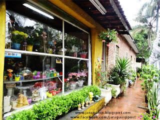 Floricultura Flores Casa Blanca, instalada desde 1993 na primeira casa de alvenaria do bairro Jaraguá