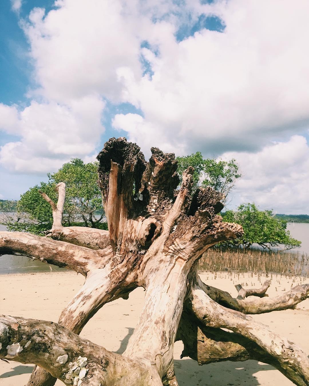 Alam indah Pantai Ujung Kelor Lombok