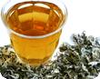 Japanese mugwort Yomogi herb tea wormwood artemisa