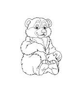 דוב קוטב חמוד לצביעה