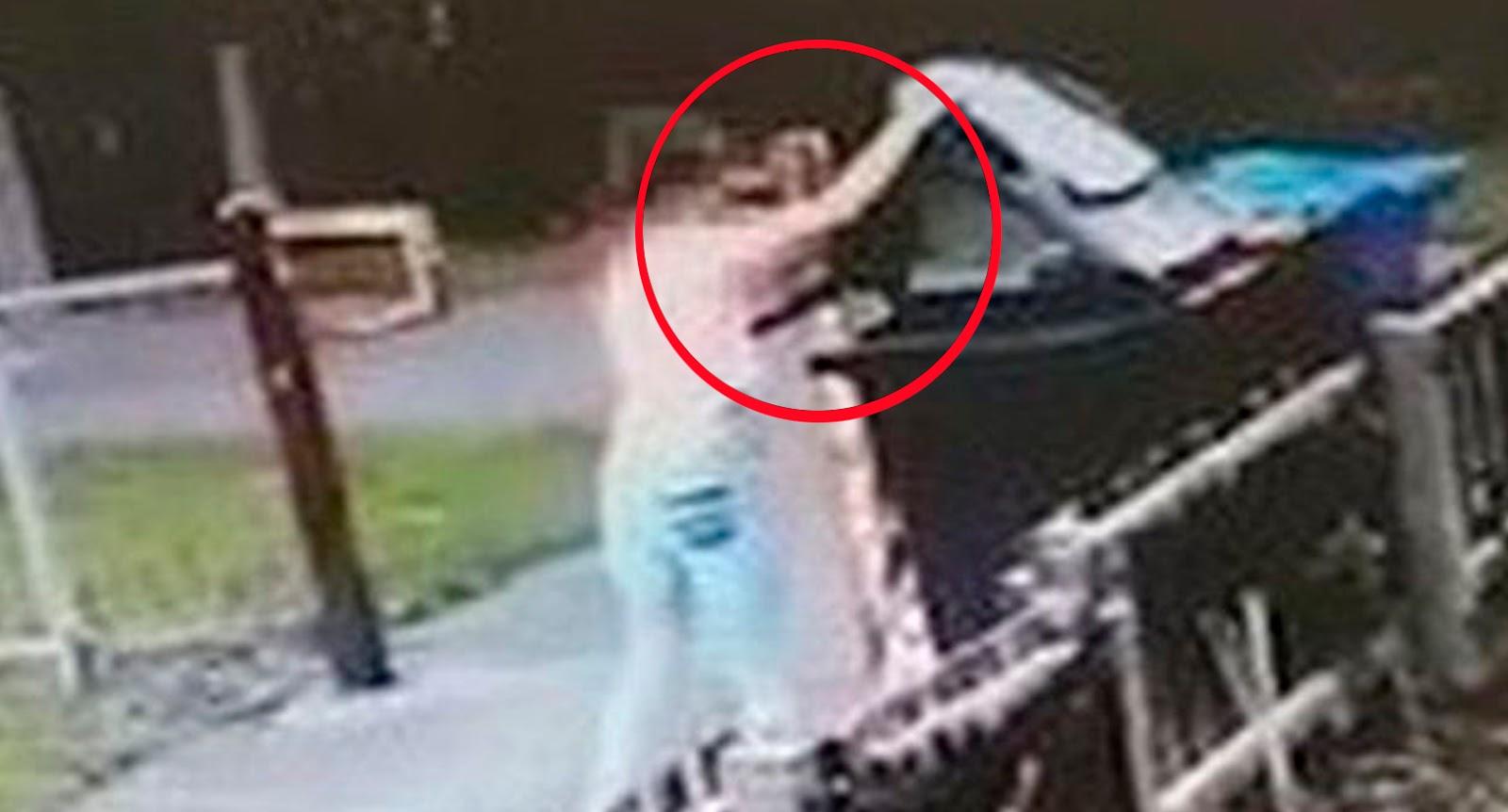 As imagens perturbadoras mostram uma garota jogando um gato preto em um  lixo e fugindo. O ato de crueldade foi revelado pela moradora Jean Atkinson  que ... 5bf90df9513
