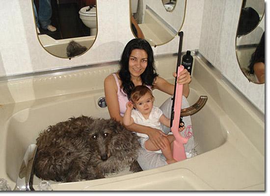 As fotos mais estranhas e inexplicáveis de todos os tempos - parte 3 - Na banheira com bebê cachorro e metralhadora