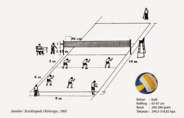 Ukuran Bola Voli Standar Nasional Dan Internasional Beserta Ukuran