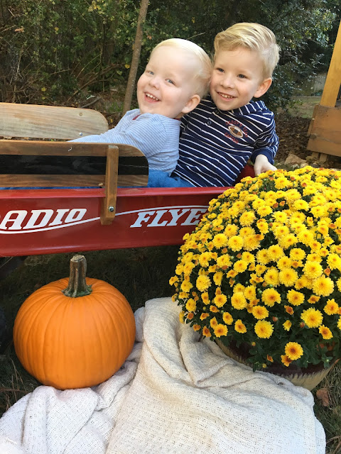 Smiling brothers in Radio Flyer wagon with fall flowers