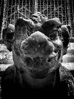 Gargouilles from Bayeux ©Guillaume Néel