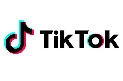 What is the TikTok application that swept the world? 84