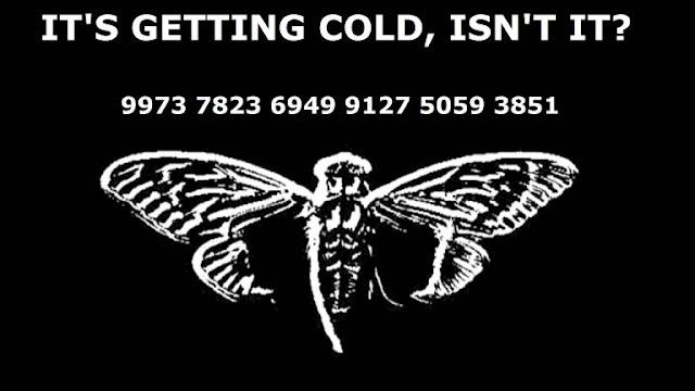 Cicada_3301-768x432.jpg