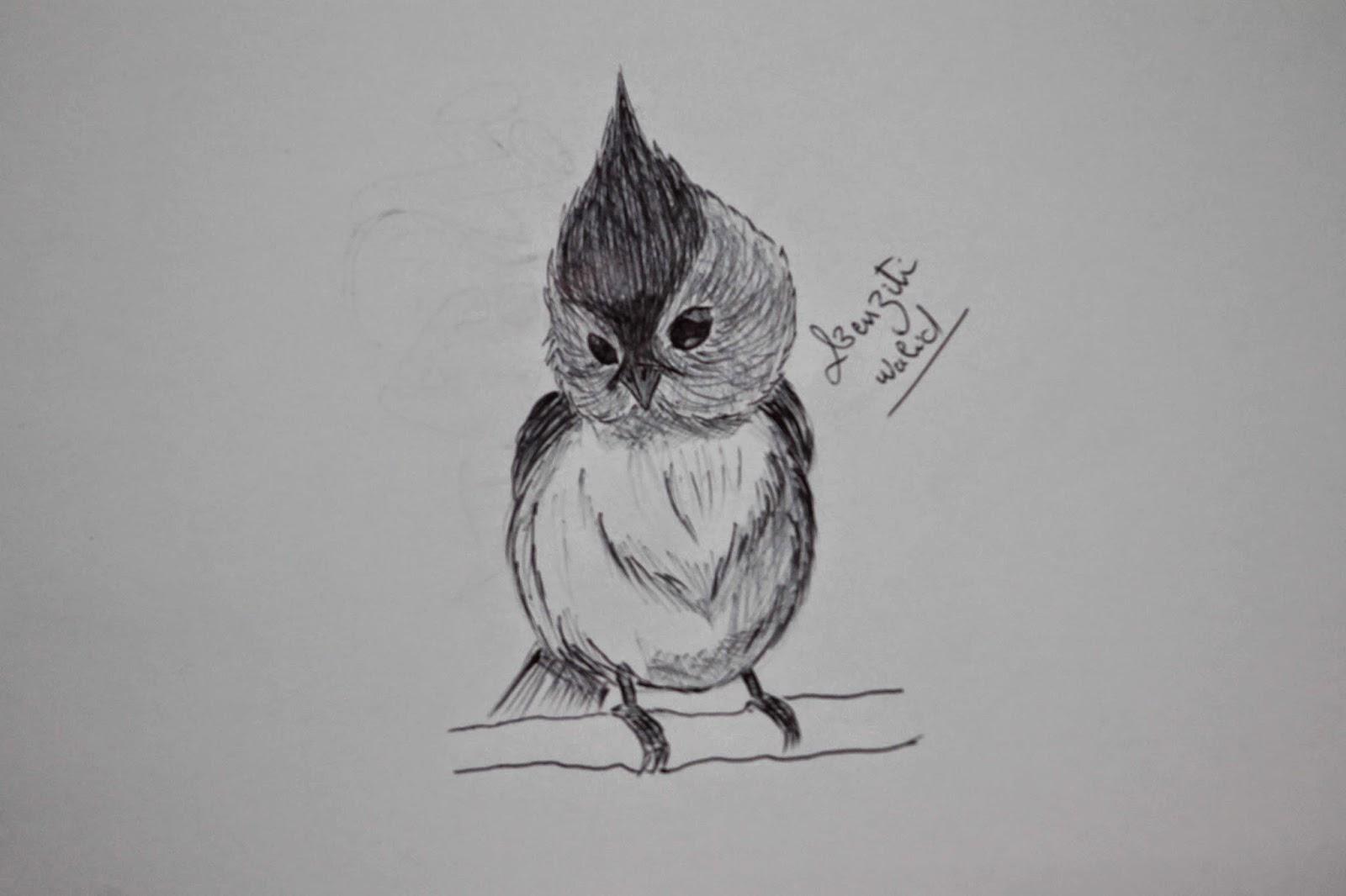 Comment Dessiner Un Oiseau Dessin Simple Mes Dessins