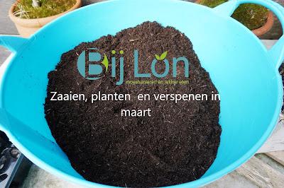 https://bijlon.blogspot.nl/2018/03/zaaien-planten-en-verspenen-in-maart.html