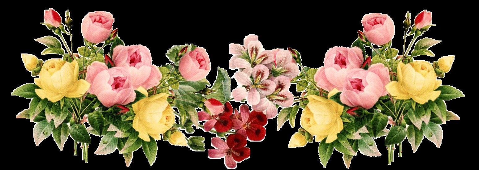 https://4.bp.blogspot.com/-VdZrGB8SEio/WXLS7ehy8vI/AAAAAAAHN10/v9BW7d506689vuJZqiq8hRZabN_6i02RgCLcBGAs/s1600/Flowers-PNG-3.png