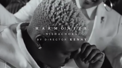 Harmonize - Nishachoka video